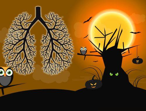 普维动物保健品有限公司, 动物饲料添加剂, 植物提取物, 植物生物素, 精油, PFA, 植物性饲料添加剂, 植物学, 植物性饲料添加剂, 新型促生长剂, 植物素, 替代抗生素促生长剂, 天然产品, 肠道健康, PlusVet Animal Health,植物活性成分, 家禽,呼吸系统疾病,植物精油